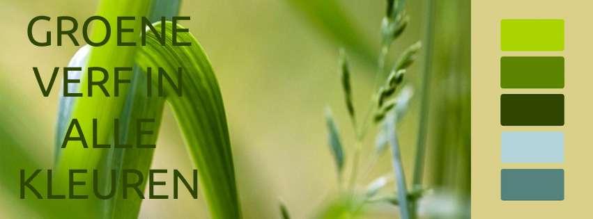 groene eco verf