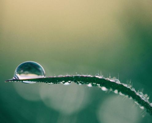 vochtregulering duurzame verf blog